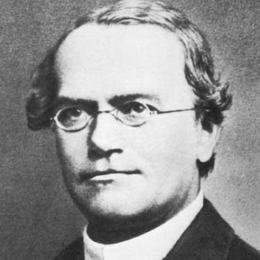 Gregor Mendel kimdir